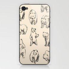 Bears iPhone & iPod Skin