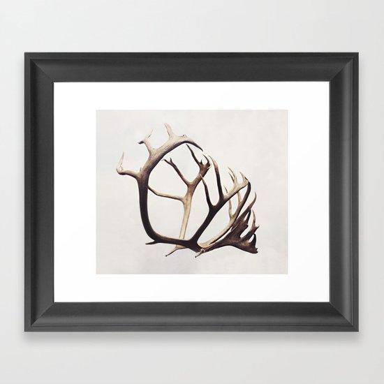 fig. 03 | antlers Framed Art Print