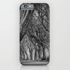 The Trees, Norfolk Slim Case iPhone 6s