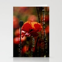 poppy Stationery Cards featuring Poppy by Falko Follert Art-FF77