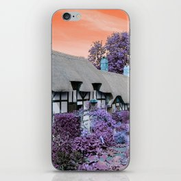 Psychedelic Cottage II iPhone Skin