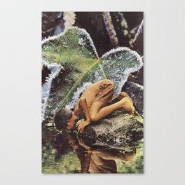 Reflective Frames Canvas Print