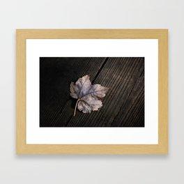 the lifelines of fall Framed Art Print