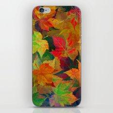Colors of Autumn iPhone & iPod Skin