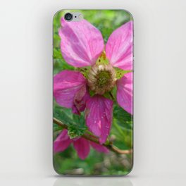 Pacific Northwest Native Roses iPhone Skin