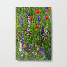 Close-up Wildflowers Metal Print