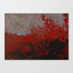 Vibrant Warmth Canvas Print