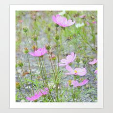Wild Flowers in the Field Art Print