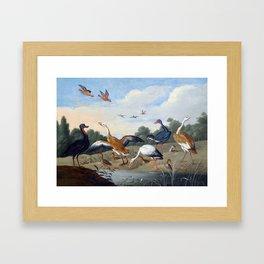 Jan van Kessel the Elder Egrets and Ducks Framed Art Print