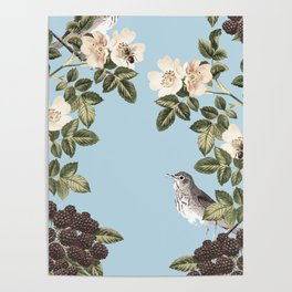 Birds and the Bees Blue Poster