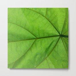 Jungle Fronds Green Metal Print