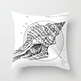 Geometry of a Charonia tritonis Throw Pillow