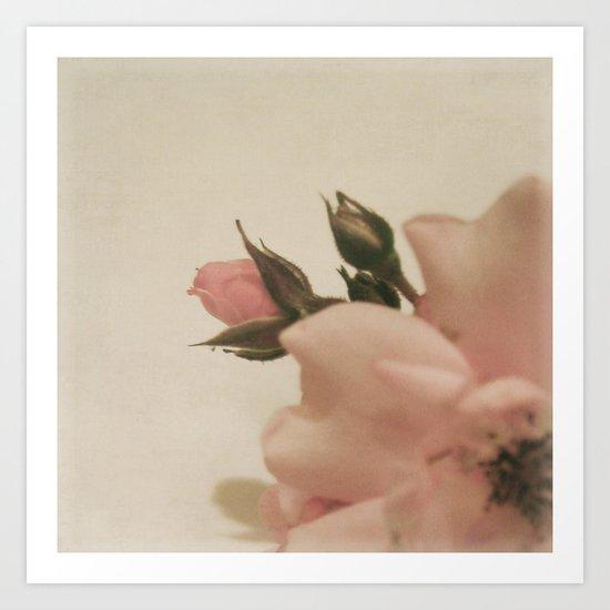 Floral Variations No. 1 Art Print