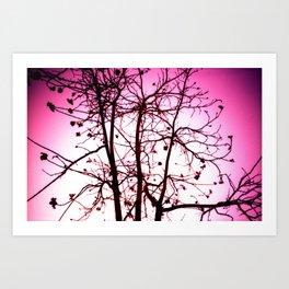 La vie in Rose Art Print