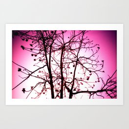 La vie in Rose Art Print