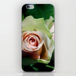 Whispering secrets iPhone Skin