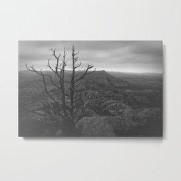 Mt. Scott Metal Print