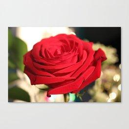 Red Rose Focus Canvas Print