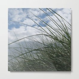 Grass in the dunes at sea against blue sky with white clouds Metal Print