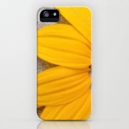 Sunflower in the Sand iPhone Case
