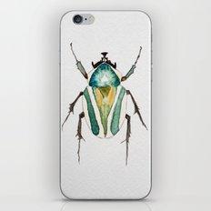 Beetle Watercolor II iPhone & iPod Skin