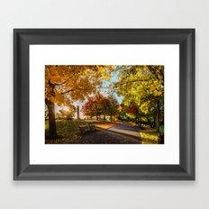 Crazy Fall Framed Art Print