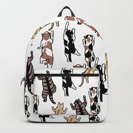 Climbing Cats Backpack