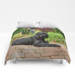 Garden Portrait of Izzy Comforters