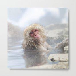 Snow Monkey Hot Springs Metal Print