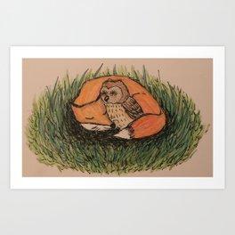 Fox & Owl Art Print