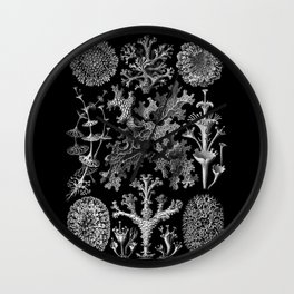 Lichens(Lichenes) by Ernst Haeckel Wall Clock