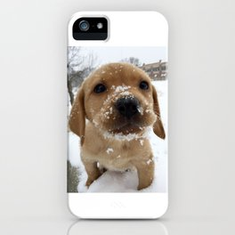 An Evolutionary Leap iPhone Case