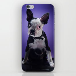 Super Pets Series 1 - Super Bugsy iPhone Skin