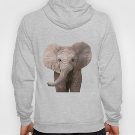 Cute Baby Elephant Hoody