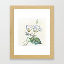 lotus and dragonfly Framed Art Print