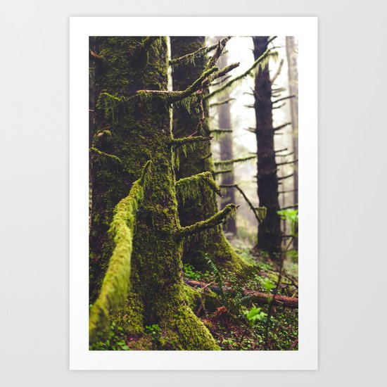 RainedForest Art Print