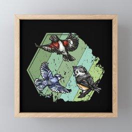 Birds Garden Birds Retro Framed Mini Art Print