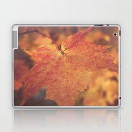 Autumn Bright Laptop & iPad Skin