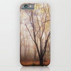 Fallen Slim Case iPhone 6s