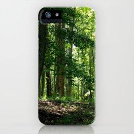 Pine tree woods iPhone Case