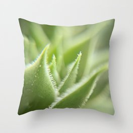 Sempervivum Throw Pillow