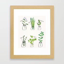 Mason Jar Herbs Framed Art Print