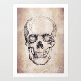Hand Drawn Skull, Vintage. Art Print