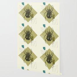 Beetle colors Wallpaper