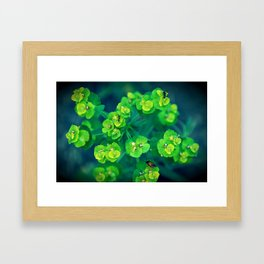 Green rhapsody Framed Art Print