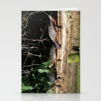 turtles Stationery Cards featuring Turtles by Stu Willard