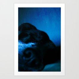 Snooze2 Art Print