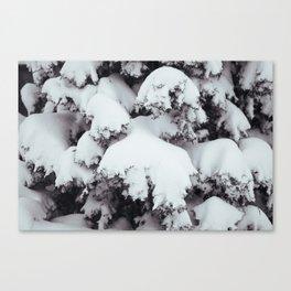 Heavy Snows Canvas Print