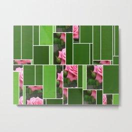 Pink Roses in Anzures 4 Art Rectangles 12 Metal Print
