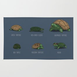 Know Your Turtles Rug